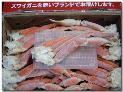 ボイル・本ズワイガニ3L 5kg箱17肩
