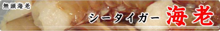シータイガー海老