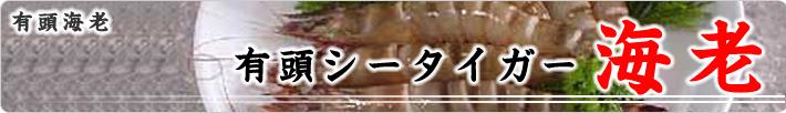 有頭シータイガー海老